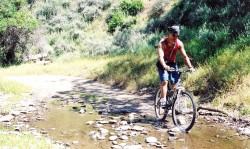 bicycle trips to enjoy the beautiful countryside of Andalucia