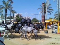 Feria in Jerez de la Frontera with barrels of sherry
