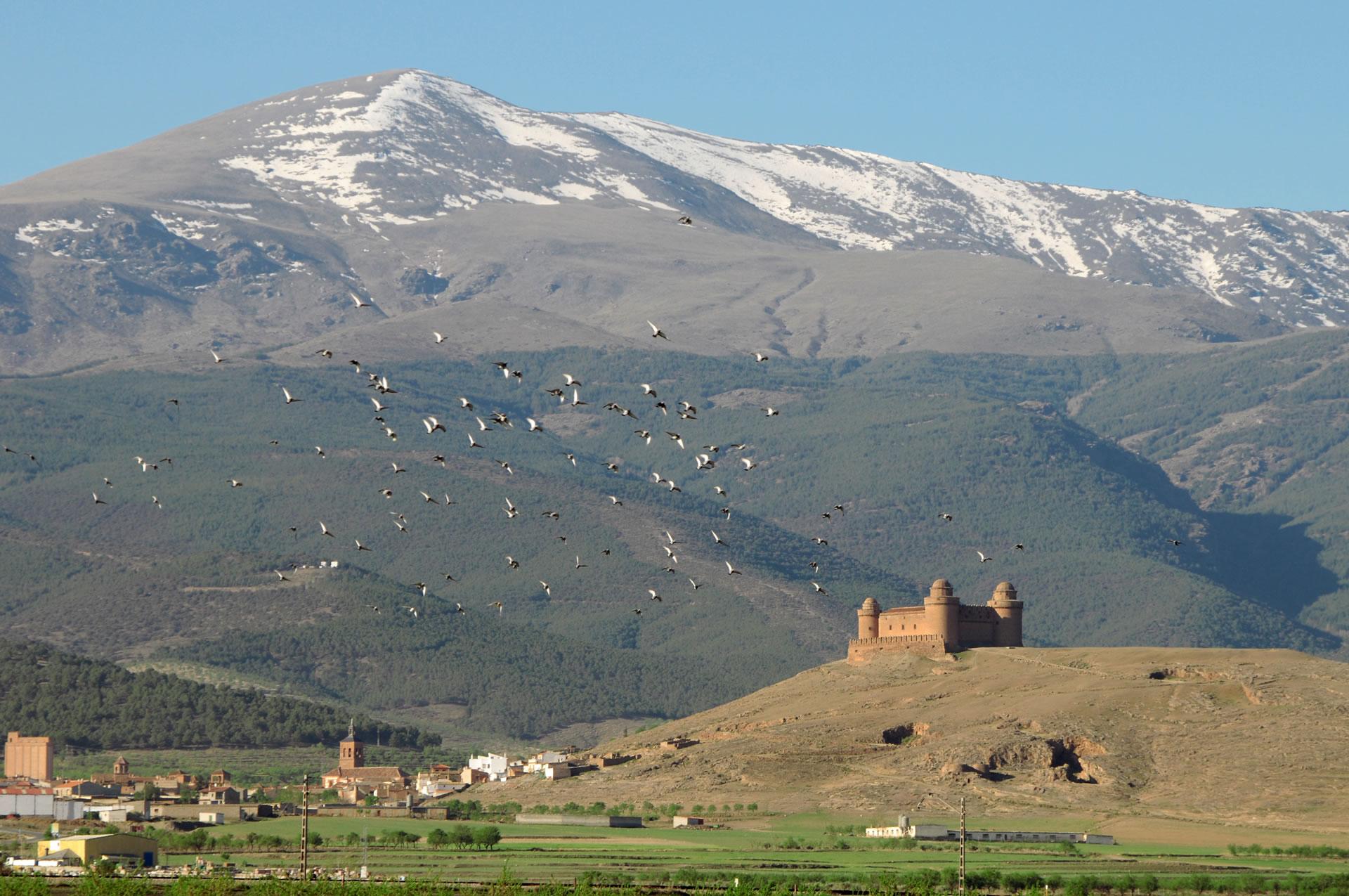 The Grandeur of Granada