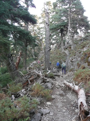 New hiking group on the Costa del Sol - Walking4Fun