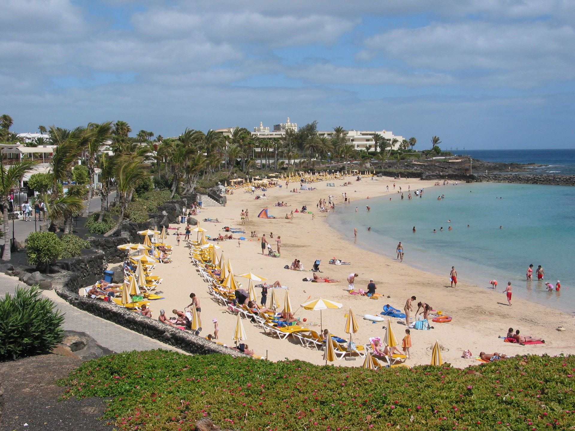 Best Canary Island For Walking And Wildlife