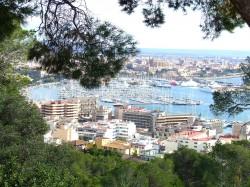Palma Marina, Mallorca (www.talkyachtspalma.org)