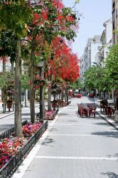 Estepona – nice little city in western Malaga