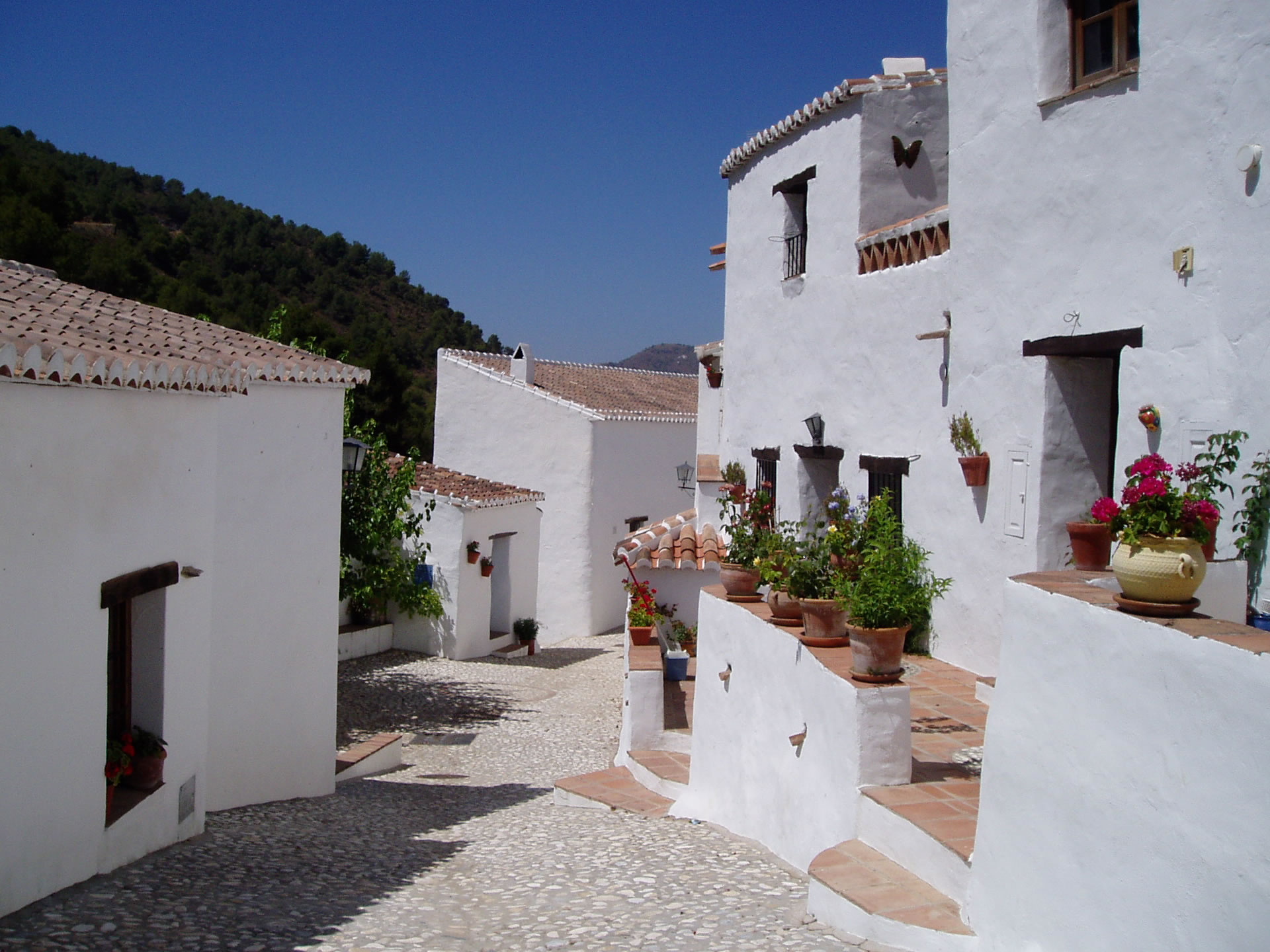 El Acebuchal - The Lost Village